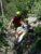 В Ялтинских горах спасали девушку, травмированную при спуске с плато Ай-Петри